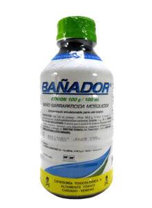BAÑADOR(1)